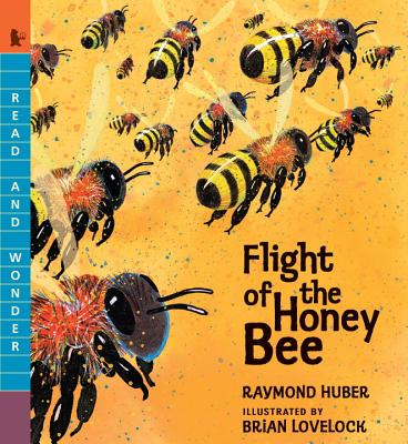Flight of the Honey Bee (Read and Wonder) Cover Image