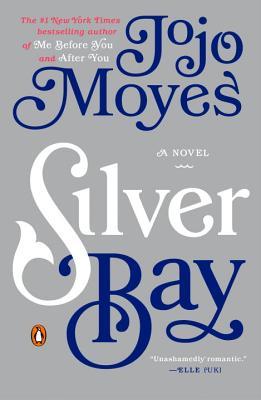Silver Bay: A Novel Cover Image