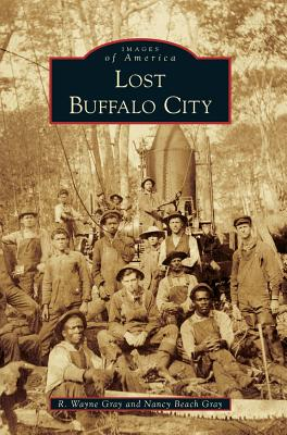 Lost Buffalo City Cover Image