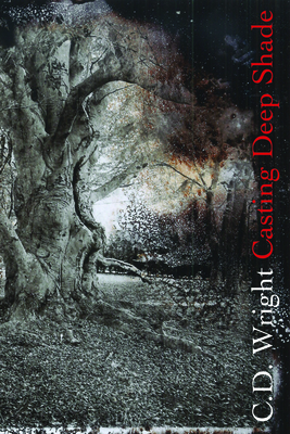 Casting Deep Shade: An Amble Cover Image
