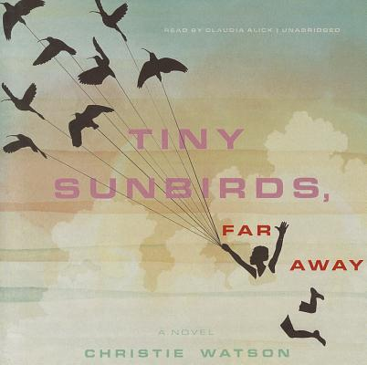 Tiny Sunbirds, Far Away Cover
