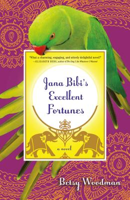 Jana Bibi's Excellent Fortunes Cover