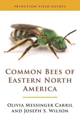 Common Bees of Eastern North America Cover Image