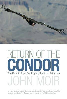 Return of the Condor Cover