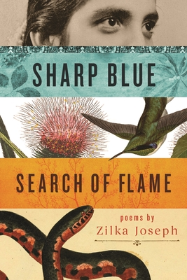 Sharp Blue Search of Flame Cover