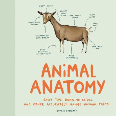 Animal Anatomy: Sniff Tips, Running Sticks, and Other Accurately Named Animal Parts Cover Image