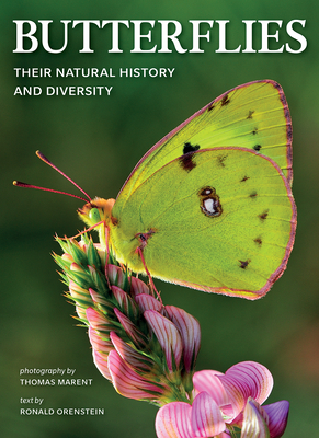 Butterflies: Their Natural History and Diversity Cover Image
