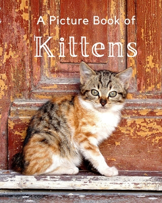 A Picture Book of Kittens: A Beautiful Picture Book for Seniors With Alzheimer's or Dementia. A Wonderful Gift For Cat Lovers. Cover Image