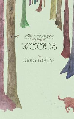 Discovery In The Woods: A St. Patrick's Day Surprise Cover Image