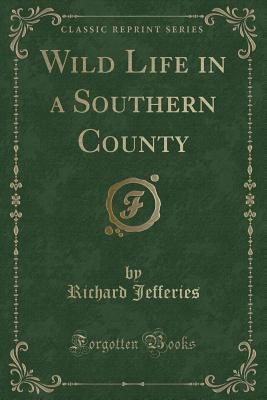 Wild Life in a Southern County (Classic Reprint) Cover Image