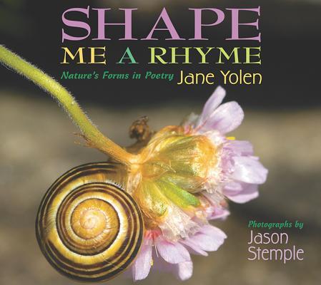 Shape Me a Rhyme Cover