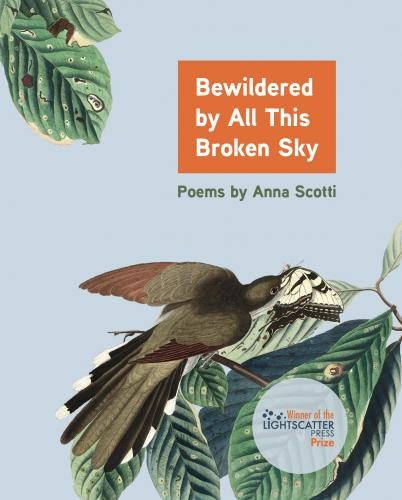 Bewildered by All This Broken Sky: Poems by Anna Scotti Cover Image