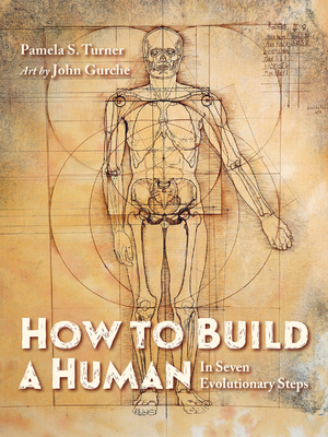 How to Build a Human: In Seven Evolutionary Steps Cover Image