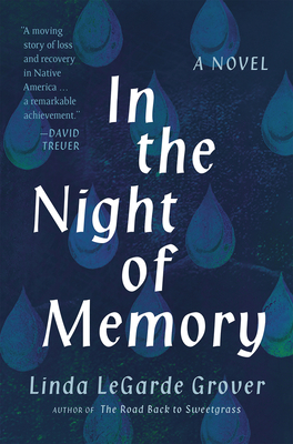 In the Night of Memory: A Novel Cover Image