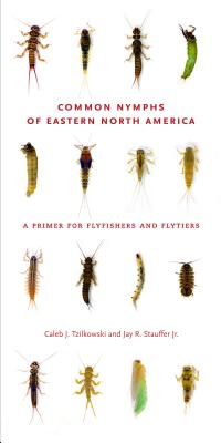Common Nymphs of Eastern North America Cover