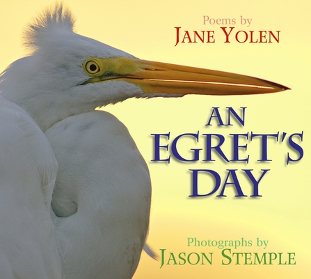 An Egret's Day Cover