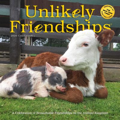 Unlikely Friendships Wall Calendar 2020 Cover Image