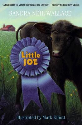 Little Joe Cover Image