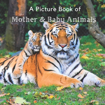 A Picture Book of Mother & Baby Animals: A Beautiful Picture Book for Seniors With Alzheimer's or Dementia. A Great Gift for Elderly Parents and Grand Cover Image