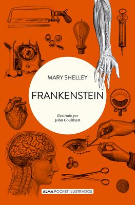 Frankenstein (Pocket ilustrado) Cover Image