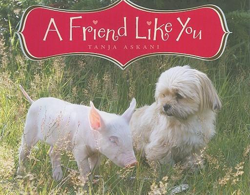A Friend Like You Cover