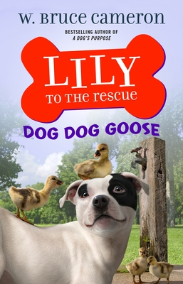 Lily to the Rescue: Dog Dog Goose (Lily to the Rescue! #4) Cover Image
