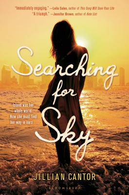 Searching for Sky Cover