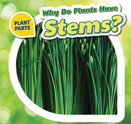 Why Do Plants Have Stems? (Plant Parts (Powerkids)) Cover Image