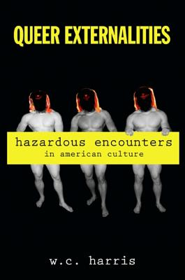 Queer Externalities: Hazardous Encounters in American Culture (Suny Series in Queer Politics and Cultures) Cover Image