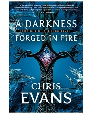 A Darkness Forged in Fire Cover