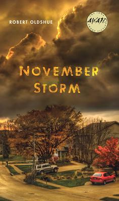 Cover for November Storm (Iowa Short Fiction Award)