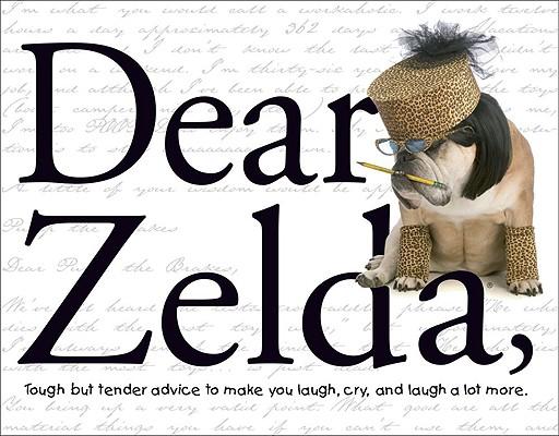 Dear Zelda Cover Image