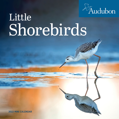 Cover for Audubon Little Shorebirds Mini Wall Calendar 2022