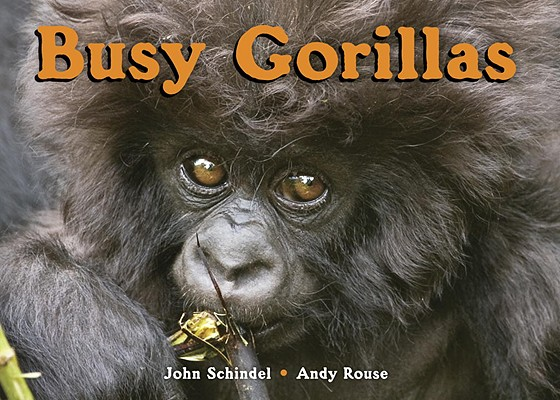 Busy Gorillas Cover Image