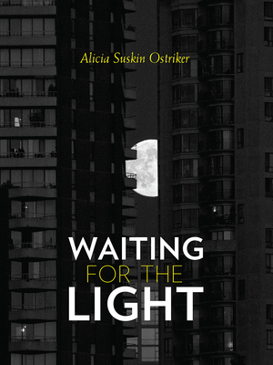Waiting for the Light (Pitt Poetry Series) Cover Image