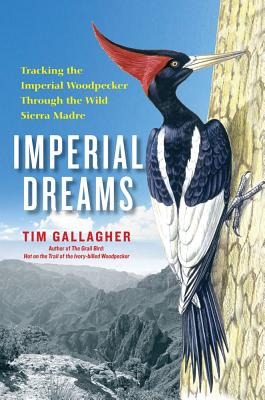 Imperial Dreams Cover