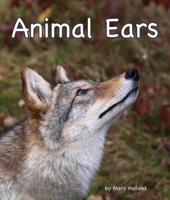 Animal Ears Cover Image