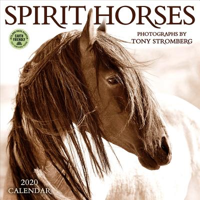 Spirit Horses 2020 Wall Calendar: Photography by Tony Stromberg Cover Image