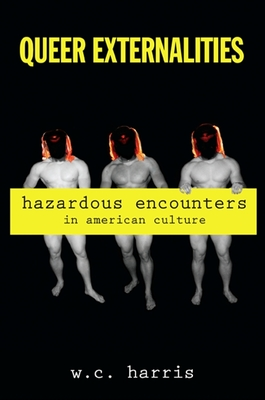 Queer Externalities: Hazardous Encounters in American Culture (Suny Series in Queer Politics and Cultures) Cover Image