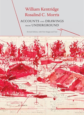 Accounts and Drawings from Underground: The East Rand Proprietary Mines Cash Book (The Africa List) Cover Image