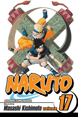Naruto, Vol. 17 cover image