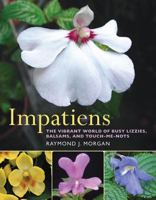 Impatiens Cover
