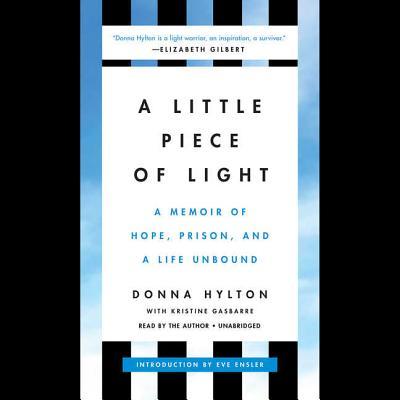 Cover for A Little Piece of Light Lib/E