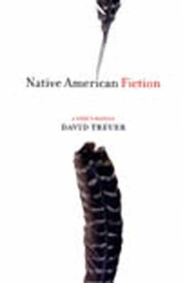 Cover for Native American Fiction