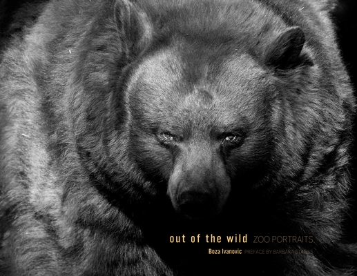 Out of the Wild Cover