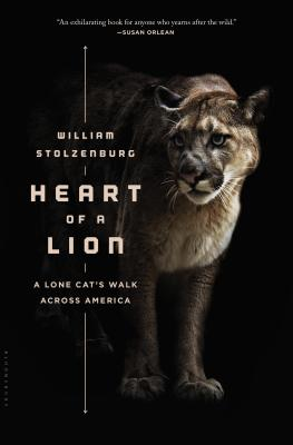 Heart of a Lion: A Lone Cat's Walk Across America Cover Image