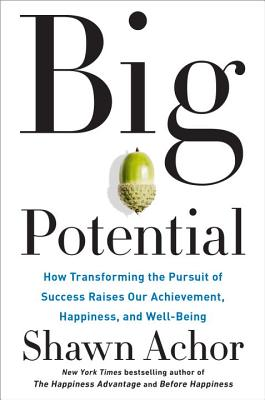 Big Potential: How Transforming the Pursuit of Success Raises Our Achievement, Happiness, and Well-Being Cover Image
