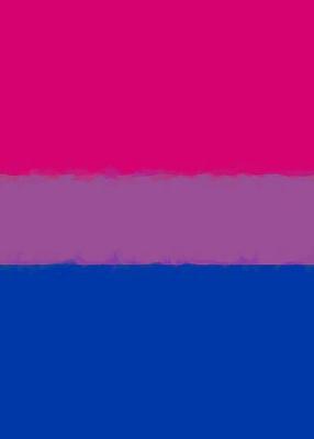 Bisexual Pride Flag Sketch Journal Cover Image