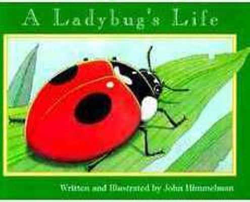 A Ladybug's Life (Nature Upclose) Cover Image