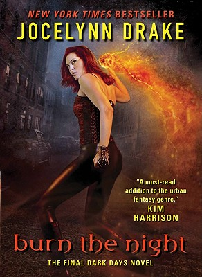 Burn the Night: The Final Dark Days Novel Cover Image